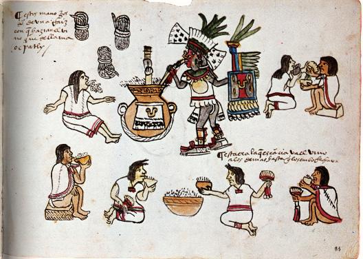 """""""Um dos deuses do pulque sorve a bebida em cerimônia de embriaguez dos mexicas (Códice Magliabechiano, f 85, século XVI)"""